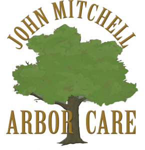 John MItchell Arbor Care